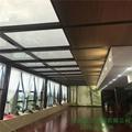 上海电动蜂巢天棚帘