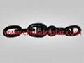 Anchor chain 3
