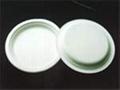 "plate 9"""