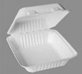 lunch Box -- 8 x 8 x 2