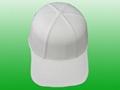 Pulp paper Hat (disposable)