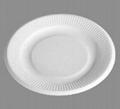 "plate 5 """