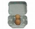 egg carton -6 pockets