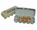 egg carton -10 pockets