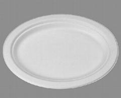 "small platter   10.25"" x 7.75 """