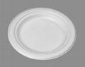 "6"" deep plates"