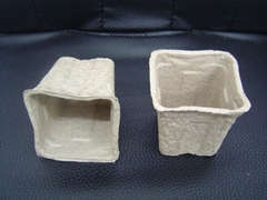 flower pots  ---disposable and biodegradable