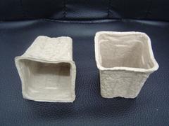 flower pots  ---disposab