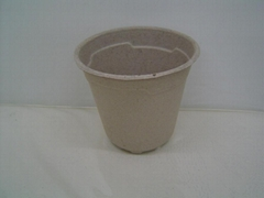 flower pot ---1 gallon a