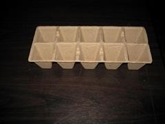 peat pot ---10 pcs -- biodegradable