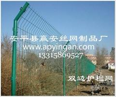 雙邊護欄網