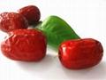 新疆若羌红枣 2