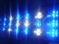 led aquarium light high power led for marine reef aquarium 2