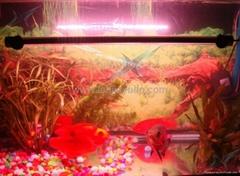 LED underwater tube light arowana light growth light aquarium lighting