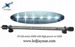 LED Aquarium Light LED Waterproof Tube LED Arowana waterproof lamp
