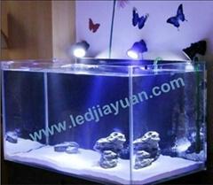 LED amphibious aquairum spotlight