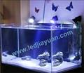 LED 水陆两用小射灯 3