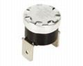 Bimetal Thermostat for Electric Wae