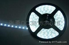 新品LED5050防水燈條