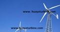 wind turbine generator/wind generator