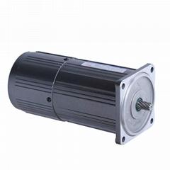 微型定速电机