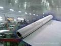 100 Mesh Plain Woven Stainless Steel