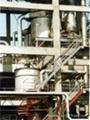 Ammonium tungstate roaster