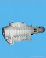 ZJP-2500羅茨真空泵