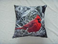 Print Red bird Cushion cover