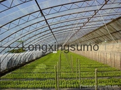 200micron UV Greenhouse Film
