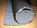 塑料土工垫恩卡网生产线