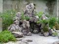 塑石塑樹泉景