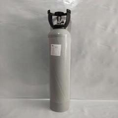 供應工藝控制儀器檢測標準氣40升硫化氫罐充換氣服務