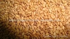 3 types Sesame Seed