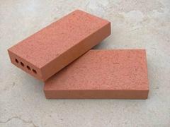 窯變頁岩燒結磚