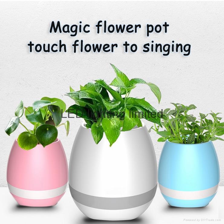 music flower vase
