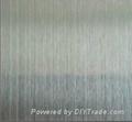 Stainless steel scrub