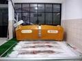 Carpet Washing Machine 4