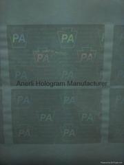 PA overlay hologram