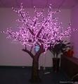 2.5M High Outdoor LED Natural Peach