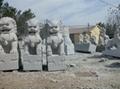 石雕石狮子 5