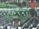 河北开元72cm立柱塑料模具