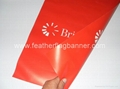 Promotion wall flags