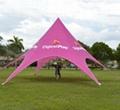 Custom big shade tent