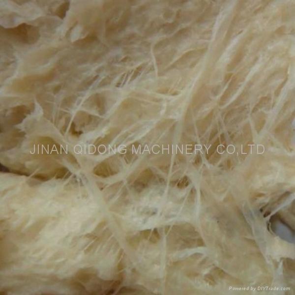 Extruder textured soybean processing machine/line 5