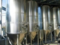 Homemade Beer Processing Line