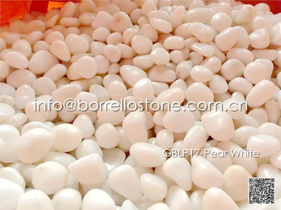 GBLP17-Pear White