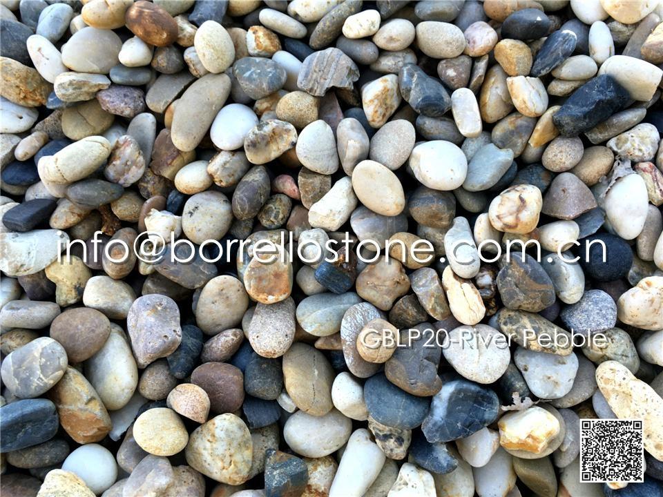 GBLP20-River Pebble