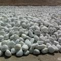 white pebble stone for garden