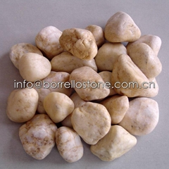 soybean yellow pebble stone